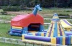 Dragon (avec ou sans toit)
