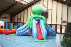 Octopus (max 8 ans/jaar)